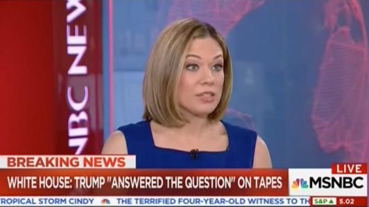 MSNBCs Elise Jordan Compares President Trump to a Suicide Bomber