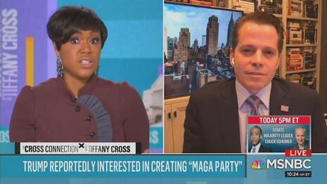 Tiffany Cross Anthony Scaramucci MSNBC The Cross Connection 1-30-21