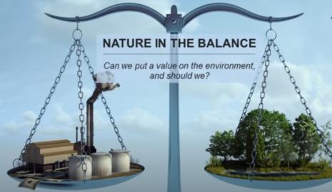Balancing nature vs industry