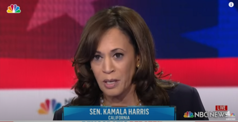 The New York Times IS LYING to You: Calls Harris a 'Pragmatic Moderate'
