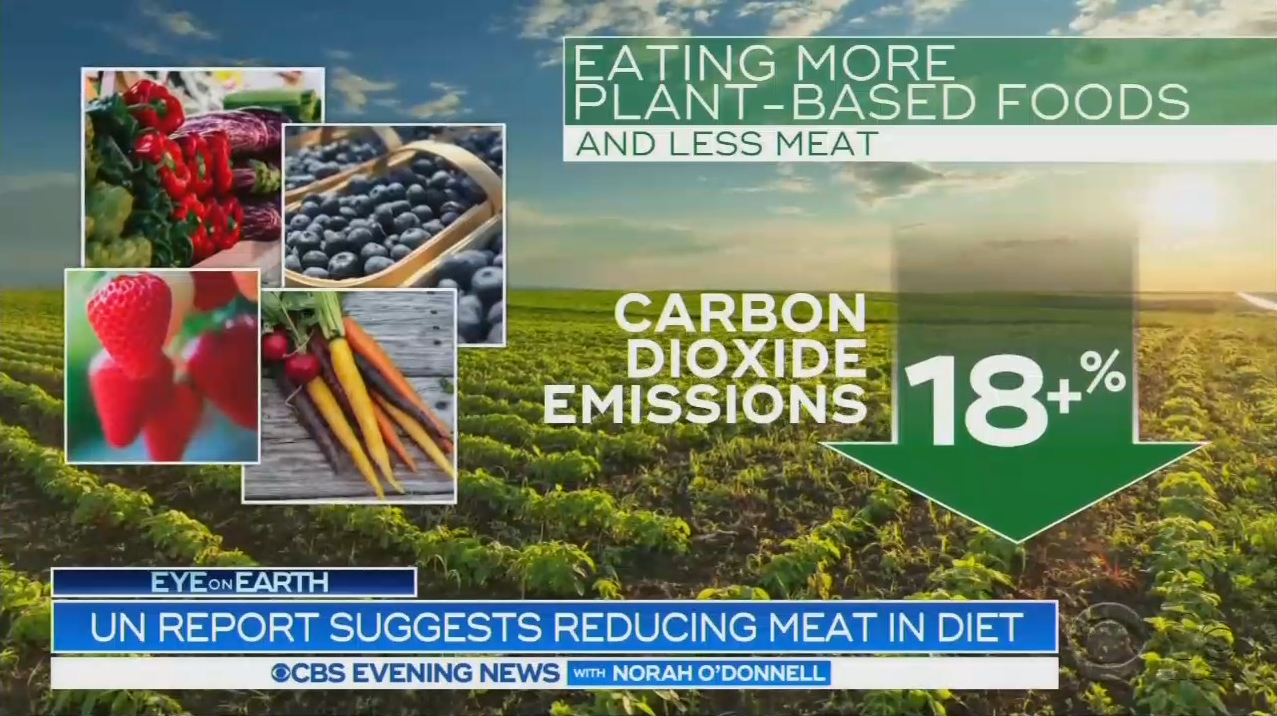 Media Climate HYSTERIA: Save the Planet, Stop Eating Meat!