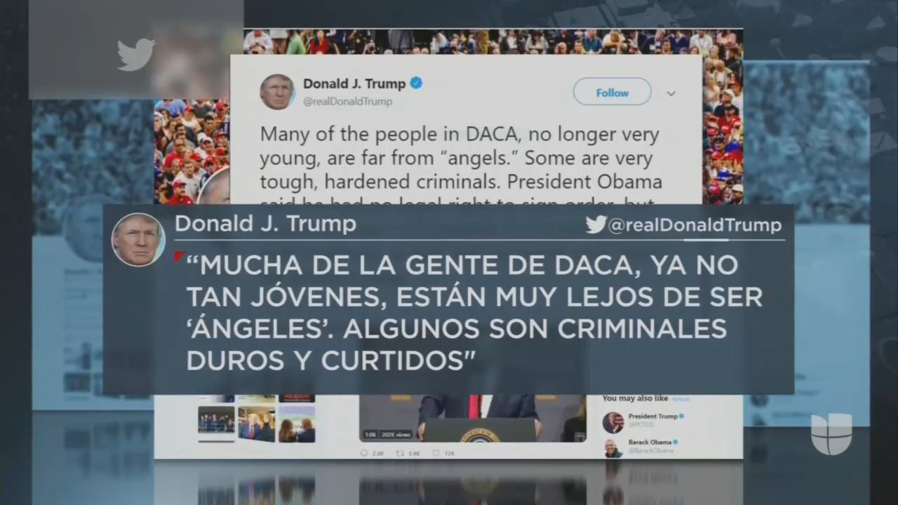 Univision Hid Half of Trump's DACA Tweet From Spanish-Speaking Viewers