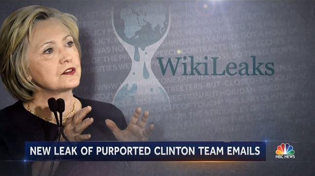 wikileaks case study