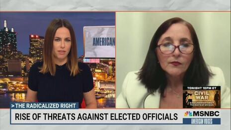 MSNBC Demonizes Concerned Parents As 'Radicalized' 'Far Right Threat' 1