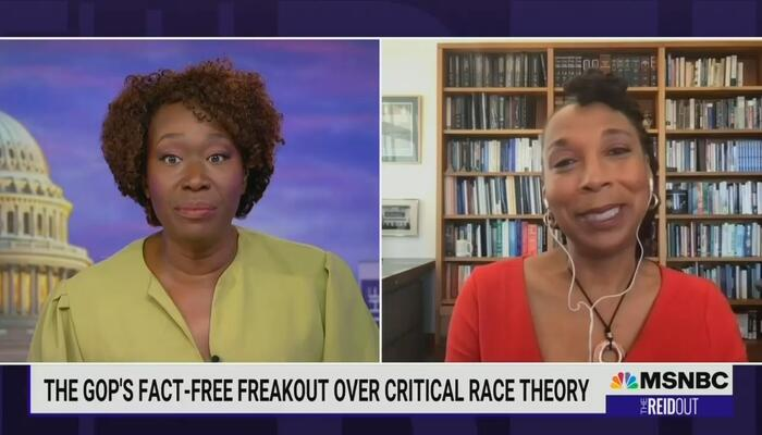 Joy Reid Trashes Conservative Parents Who Oppose Critical Race Theory