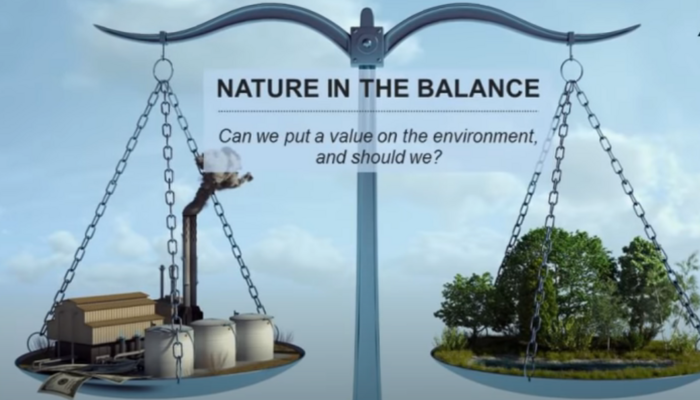 Balancing nature vs industry
